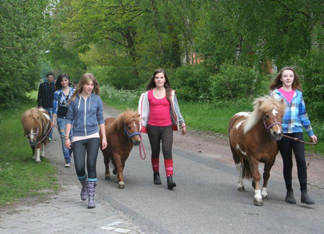 Pony-en-Paard-rijden